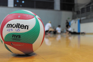 volleyball-print_s
